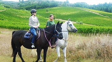 Horseback riding among the Chianti vineyards ❒ Italy Tickets